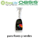 SPRAY FLORALIFE 1L FINISHING TOUCH